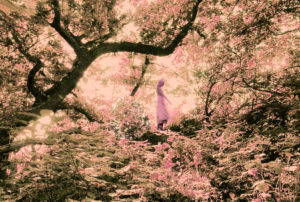 Josefin Berger in a pink fantasy forest