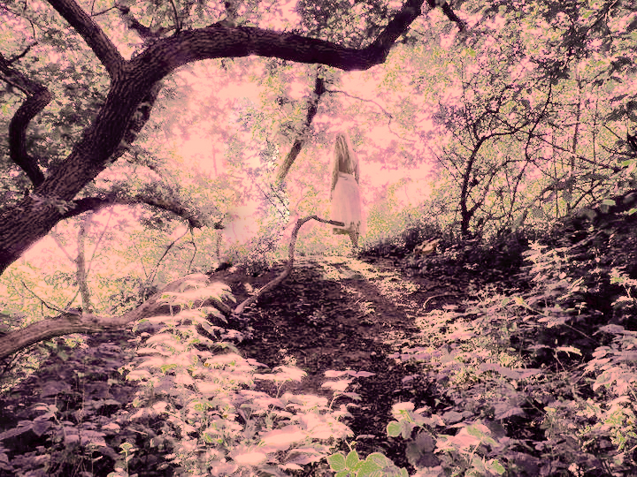 Josefin Berger in a pink Fairy Tale Forest